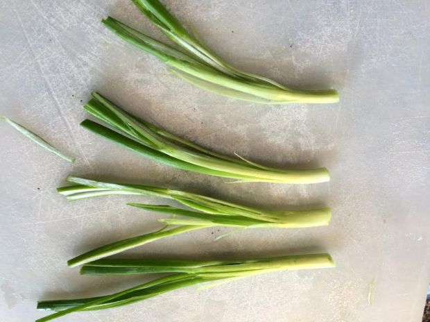 scallion garnish cut -many