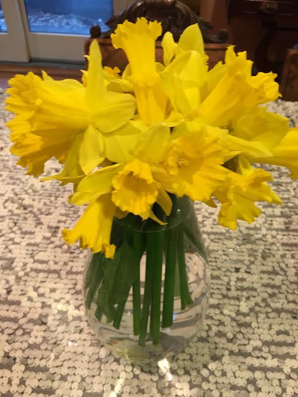yellow daffoldils