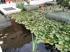 cramim spa pond area view 1