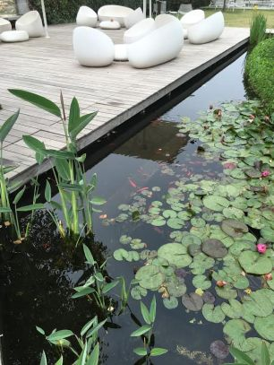 cramim spa pond area with lilly pads and fish