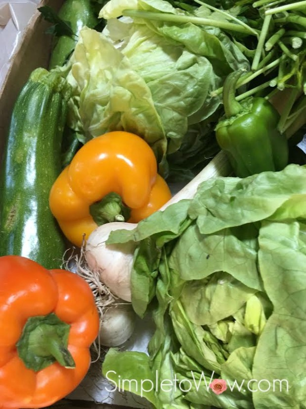 vegetable bounty  from the mccarthys