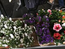 zurich train station florist 2