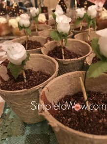 goldie-mousse-flowerpots